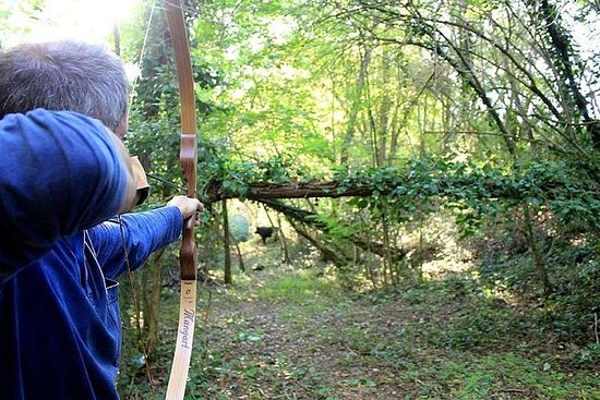 在樹林裡射箭的經驗