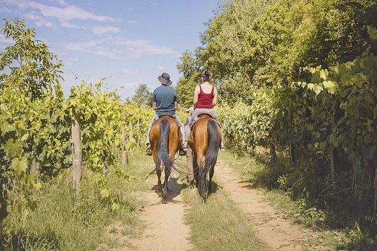 托斯卡納野餐騎馬
