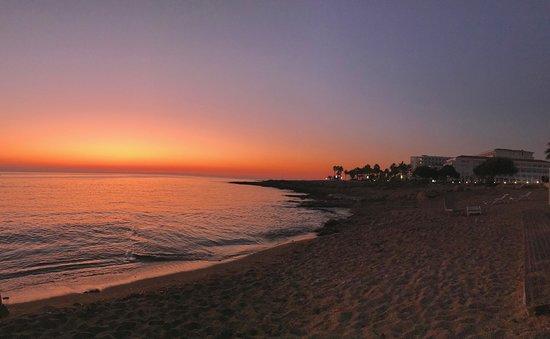 Amphora Hotel & Suites: Okolica Paphos, plaża