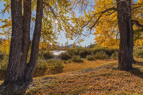 Чаган-Узун, Россия: Chagan Uzun. Mountain Altai.