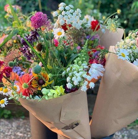 Grow Crazy in Geulle voor de mooiste en dagverse boeket bloemen voor lage prijzen