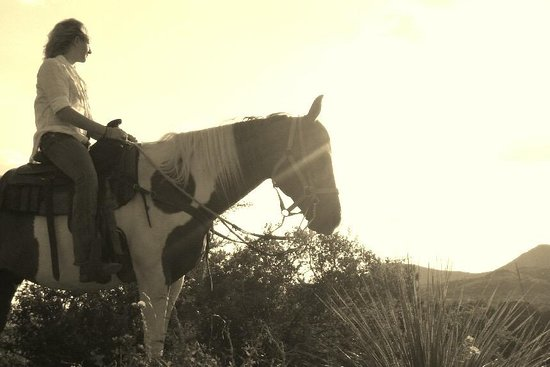 OUTLAW OUTFITTERS Horseback Adventures