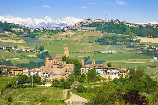 Tour del vino Barolo y Barbaresco