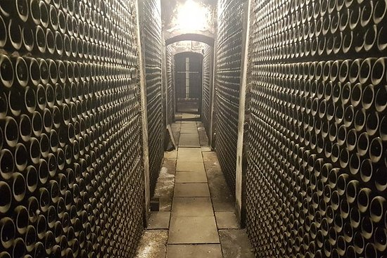 Visita y degustación de vinos en...
