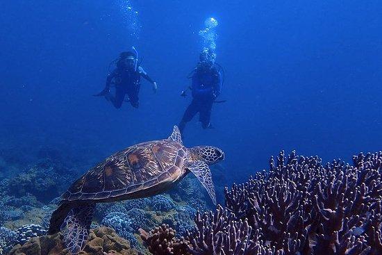 Guam's beste strandduik! - Beginners en gevorderde duiken