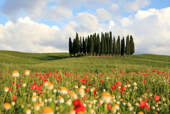 Love Tuscany - The Val d'Orcia Tour ...