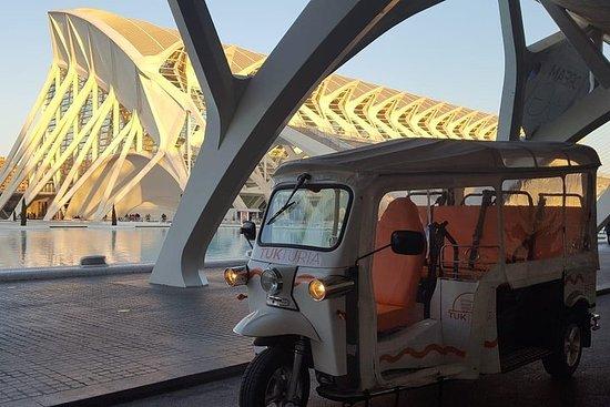 Descubre València en TukTuk...