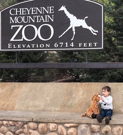 Cheyenne Mountain Zoo (Colorado Springs) - 2020 All You ...