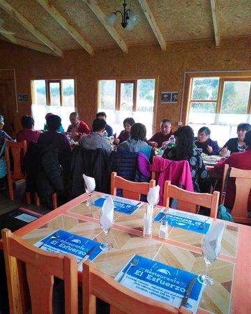 Palena, Чили: Clients