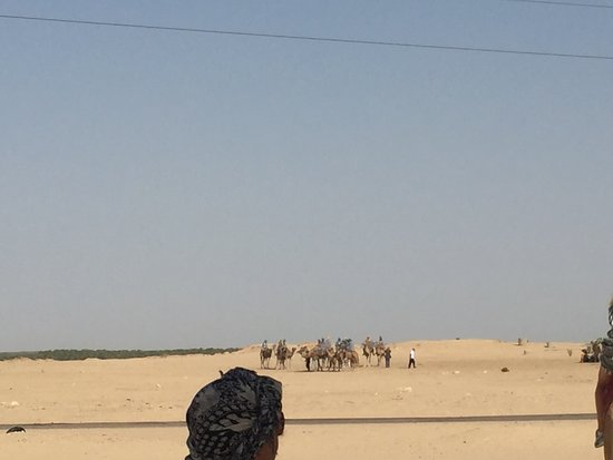 Douz, Tunesien: Gathering - for riding camels