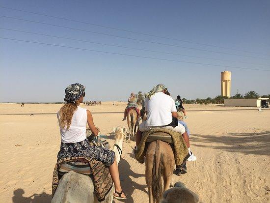 Douz, Tunesien: Ridding ...