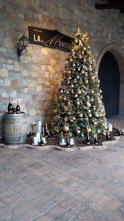 Ingresso con albero di Natale