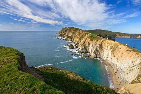 Discover Point Reyes National Seashore and Giant Redwoods