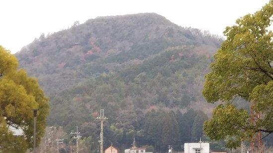 Kuroi Castle Ruins: 下から城跡(頂上)を見る