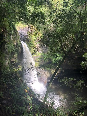 Ultimate Hana Full-Day Adventure Tour: Waterfall on the hike