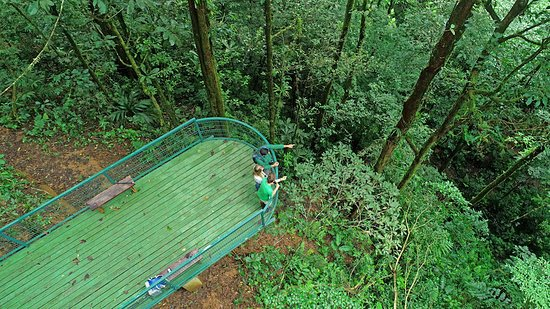 Bijagua de Upala, Costa Rica: The forest viewing platform at Tapir Valley Nature Reserve.