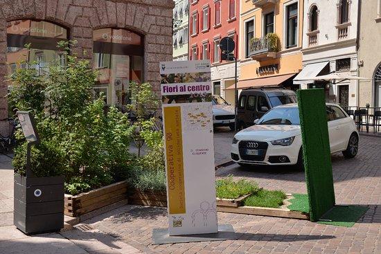 Trento, Italia: Zeleň ve městě