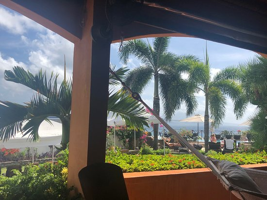 Basseterre Food and Walking Tour: View from the patio at Palm Gardens