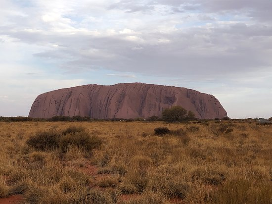 3-tägige Red Centre Camping-Safari ab Alice Springs oder Ayers Rock Bild