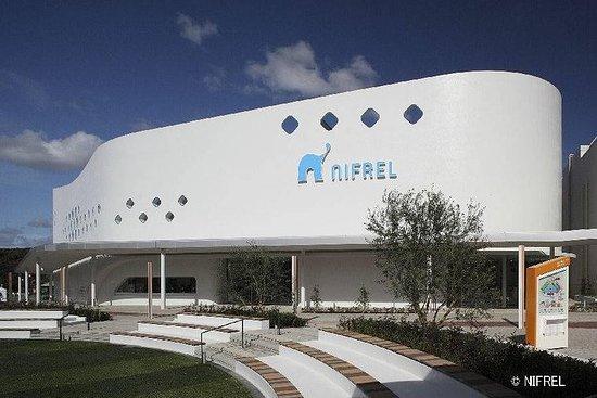 Skip the Line: NIFREL Interactive Aquazoo Admission Ticket