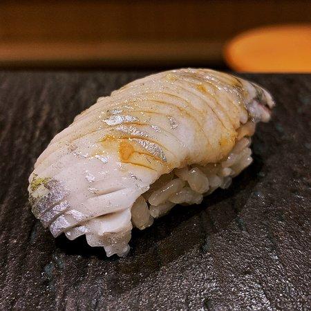 Iwashi (Japanese Sardine)