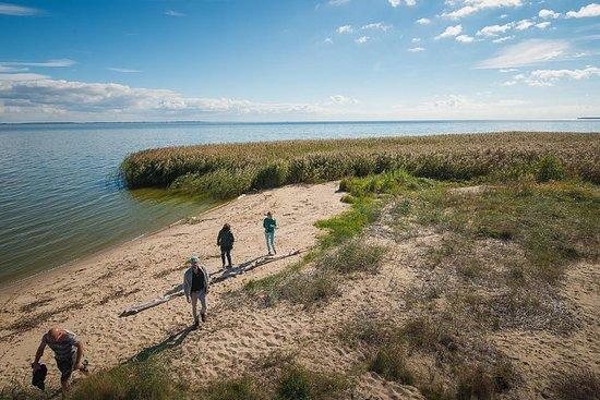 Vacanza a piedi senza guida a Curonian Spit 7 giorni
