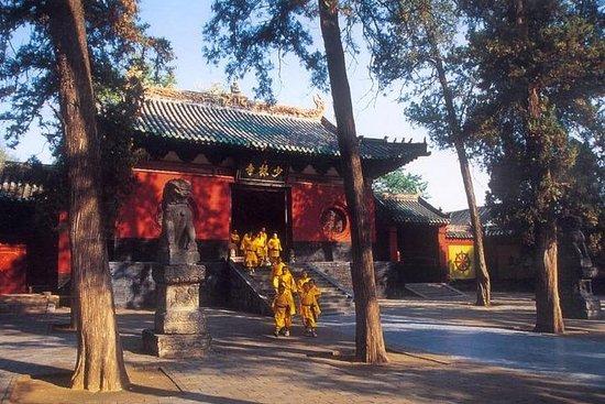 Excursión privada de un día a Luoyang...