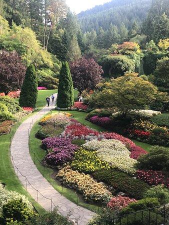 Regatta: Butchart Gardens on Victoria Island