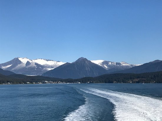 Regatta: Leaving Juneau