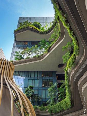 The Lush Vertical Garden Facade Picture Of Parkroyal Collection