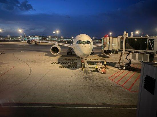 Singapore Airlines: Plane