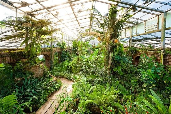 Skip the Line: Jardin Botanico in Santa Cruz Admission Ticket