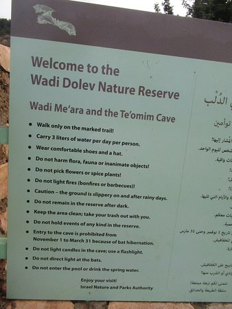 info on bat cave