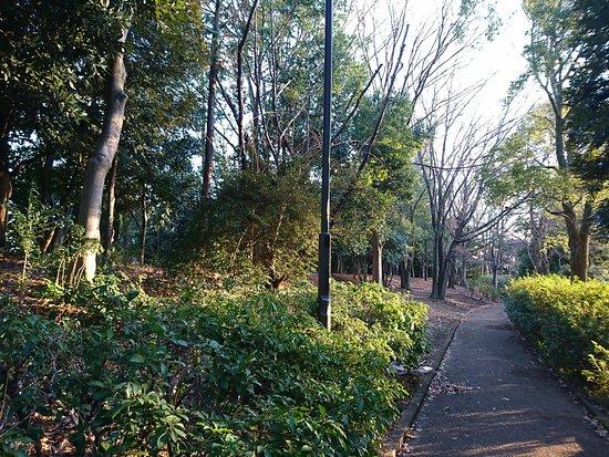 Tsuru-kame-matsu Park