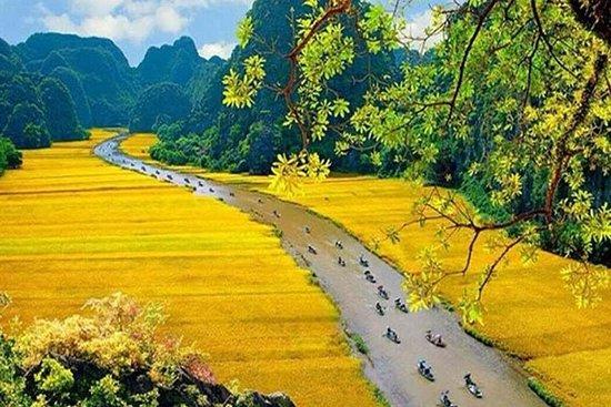 Hoa Lu - Mua Cave - Tam Coc Boating...