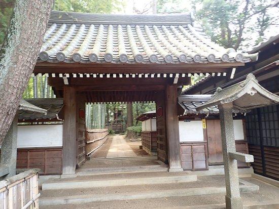 池の東にある妙福寺
