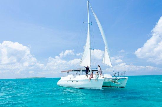 チャーターボート(デルフィナス) 船を一隻チャーターして人文たちだけのツアーを楽しむことができます。 シュノーケルやダイビング、フィッシング、クルージングなど思い思いに八重山の海を満喫していただけます。