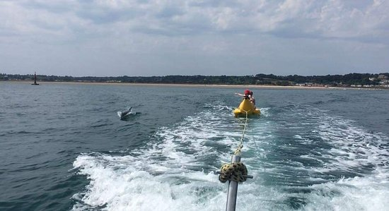 Gorey watersports centre banana boat rides with dolphins Longbeach