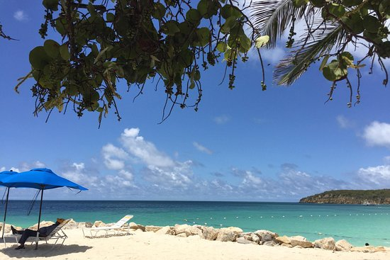 irie taxi and island tours