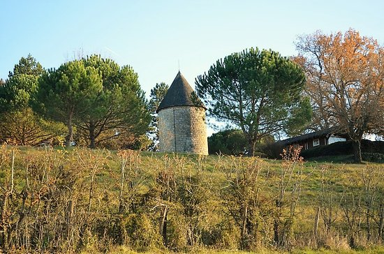 LACHAPELLE Tarn et Garonne(82) La DREB a visité ce charmant village de Lomagne avec sa chapelle réputée par son charme baroque le 24 avril 2017 Plus de photos et vidéo sur la page du blog http://dreb.eklablog.com/lachapelle-gallery175864