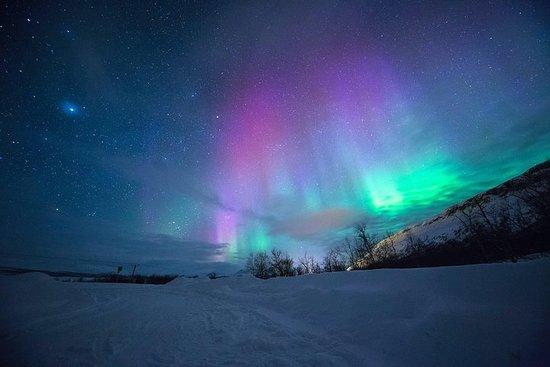 Northern Lights at Nuuk Tour