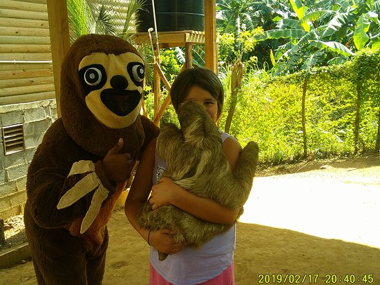 My granddaughter, holding a sloth.  This was the one thing she absolutely had to do and she loved it.  She still is talking about it over a month later.