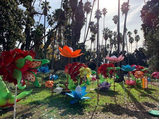 Los Angeles County Arboretum Amp Botanic Garden Arcadia