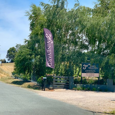 3 Willows Vineyard Image