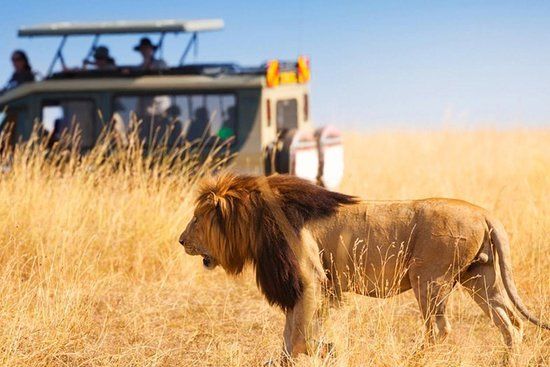 African Golf Tours and Safaris