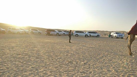 Abu Dhabi 6-Hour Desert Safari With BBQ Dinner: Arabian Desert