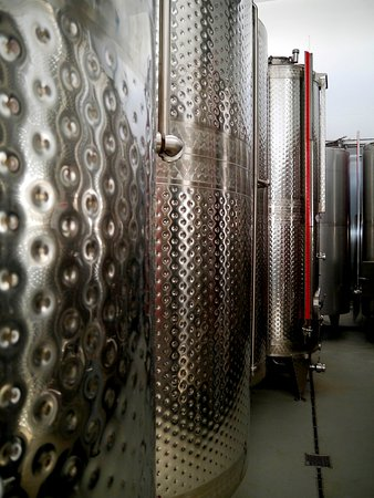 Wine Tanks and Fermenting Bins