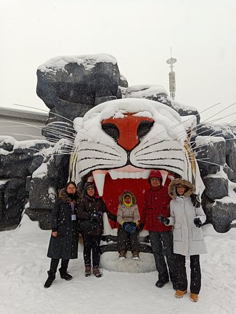 Harbin Private Tour Guide English-speaking Helen Liu with her guests at Harbin Siberia tiger park 26 December 2019