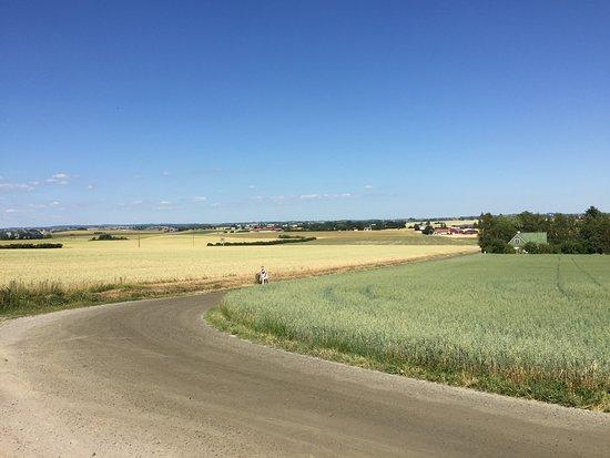Skivarp, Suecia: Det finns gott om sköna cykelvägar i Skurups kommun, där du kommer naturen nära och omges av fält och ängar. Läs mer på https://www.skurup.se/turism