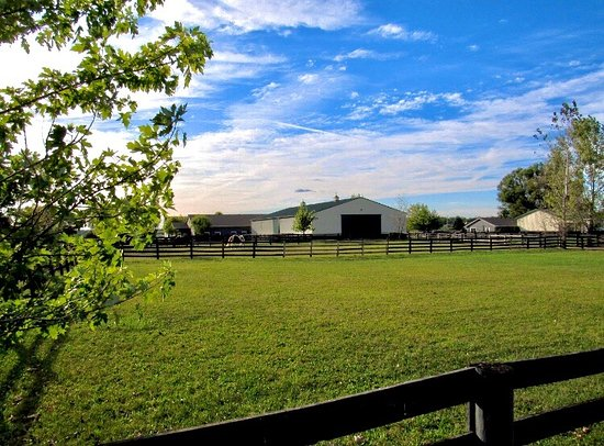 Golden Oak Equestrian Center